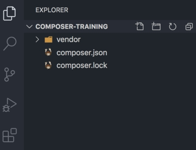 Project Folder Structure After composer install